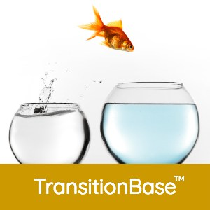 Fish_tank_Transition_square